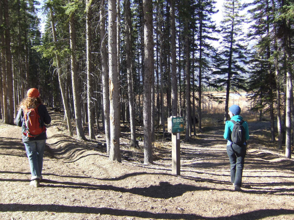 Sorrel and Laura stand on two different dirt pathways in front of a smattering of trees, with their backs facing the camera. On the left, Sorrel wears a red hat, blue jacket, red backpack, blue jeans, and brown boots. On the right, Laura wears a blue hat, teal jacket, black backpack, navy pants, and brown shoes. Beside Laura, there is a wooden post with a green sign stating directions. In the distance, there is a lake surrounded by tall brown grass. Above them, the sky is light blue with no visible clouds.